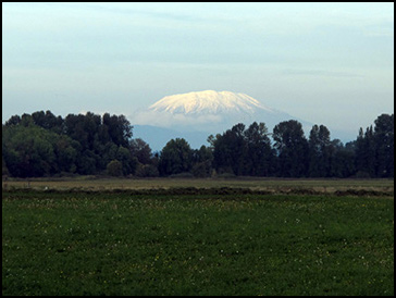 Mt. St. Helens from Sauvie Island, OR, Authors Road